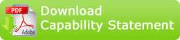 Download PPD's capability statement